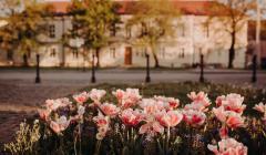 Trnavská univerzita (foto Barbora Likavská)